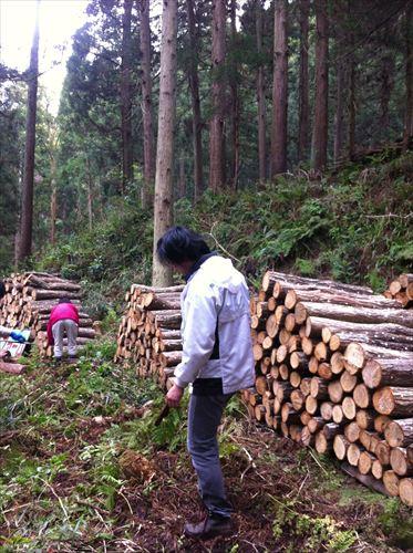 ここる ほだ木運びボランティア