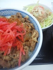並盛り+ごぼうサラダ
