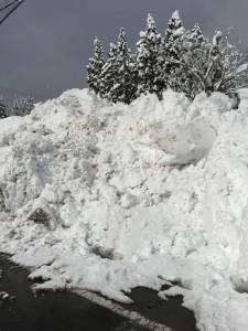 池田は雪深い