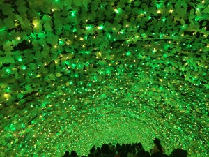 光のトンネル(復路)