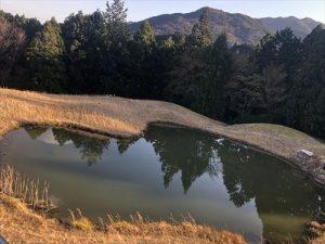 ハート型の池